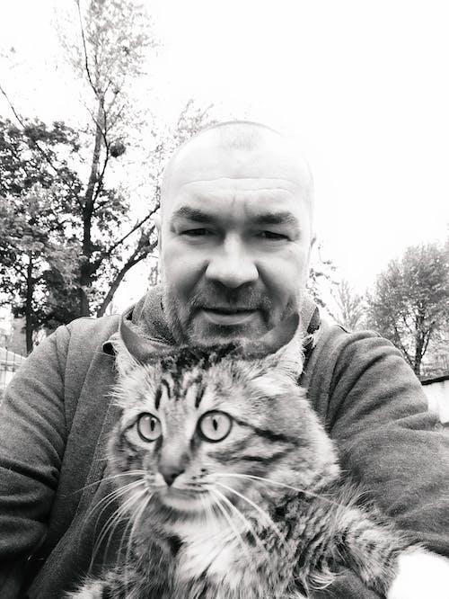 Ilmainen kuvapankkikuva tunnisteilla kävellä, kissa, кошка, на прогулке
