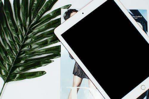 기술, 디스플레이, 만지다, 목업의 무료 스톡 사진