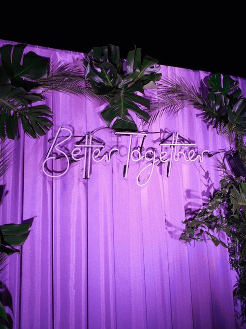 Festive bright lightening inscription telling Better together on curtain with palm branches on black background