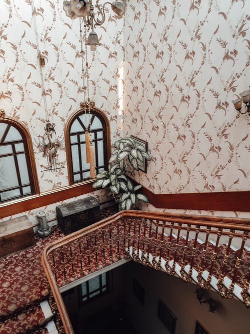 From above of stairway with wooden railings and red carpet and potted plants located in old fashioned building with high ceiling