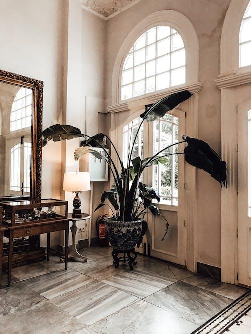 Interior of stylish room with big windows