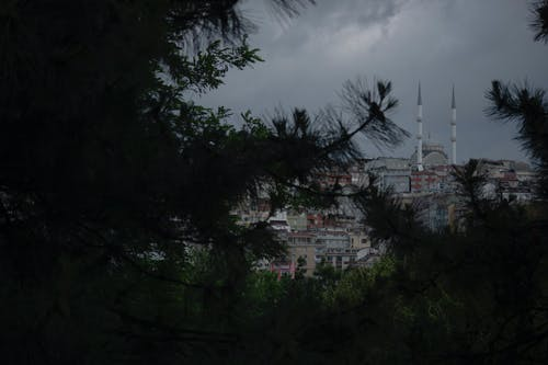 Free stock photo of istanbul, mosque, travel membuldingories