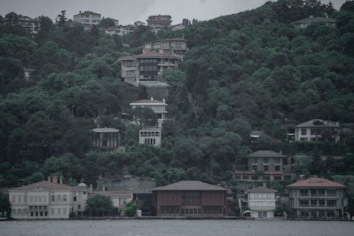 Free stock photo of istanbul, landscape, mostafa meraji