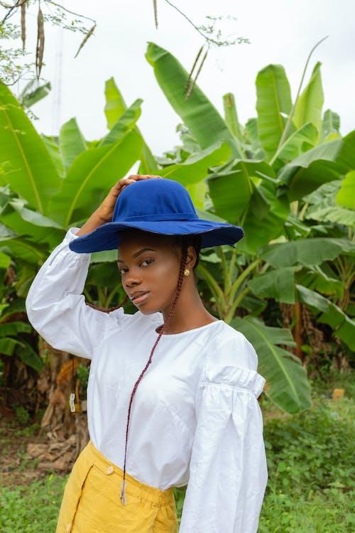 Gratis stockfoto met aanpassen, Afro-Amerikaanse vrouw, bladeren, blauwig