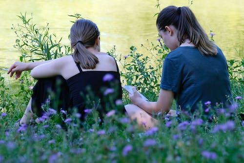 คลังภาพถ่ายฟรี ของ ดอกไม้, ทะเลสาบ, ธรรมชาติ, นั่งลง