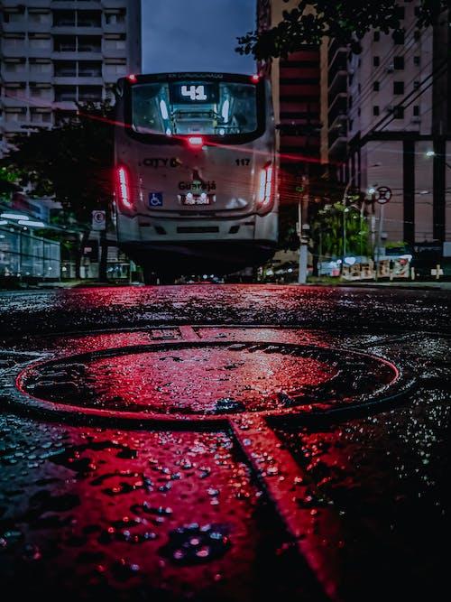 Foto d'estoc gratuïta de autobús, bus, carrer, carretera