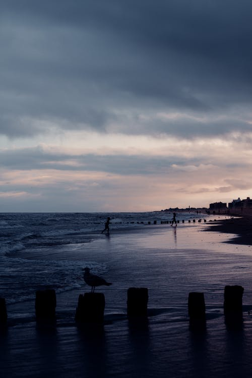 Silhouette of unrecognizable people walking on wet sandy coast of wavy ocean against cloudy sunset sky