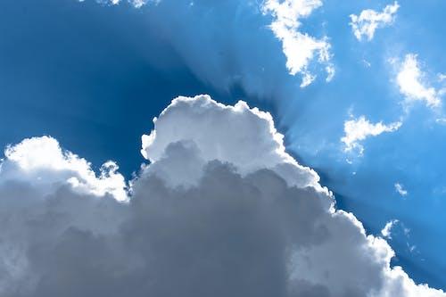 Foto stok gratis awan, biru, cahaya, lampu belakang