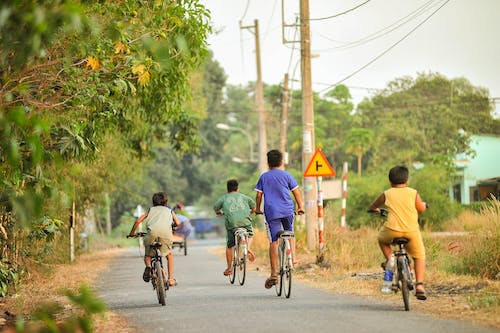 Back view of anonymous kids in casual clothes riding bicycles on asphalt road with sign among green trees in summer day in countryside