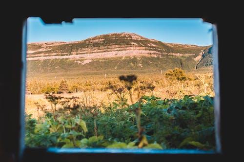 Immagine gratuita di ambiente, attraverso la finestra, campagna