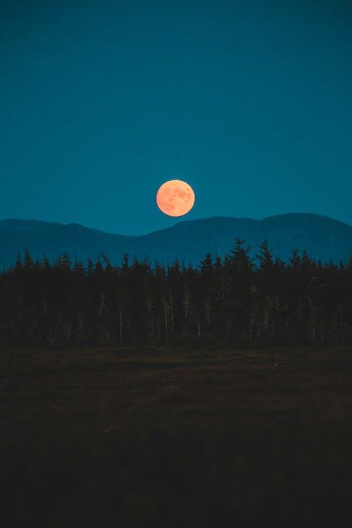 Безкоштовне стокове фото на тему «вечір, горизонт, Місячне сяйво»