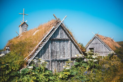 Exterior of lumber shed and church among lush green plants in traditional Norstead Viking Village against cloudless blue sky