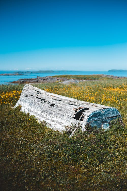 Forgotten wooden boat remnants on green coastal lawn
