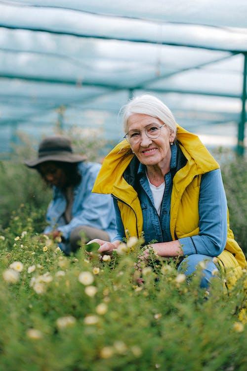garden senior