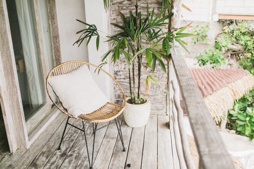 Potted plant and chair on balcony
