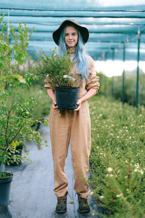 Foto profissional grátis de agricultor, ao ar livre, atraente