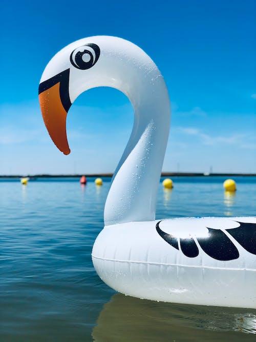 Imagine de stoc gratuită din agrement, apă, barcă, călătorie
