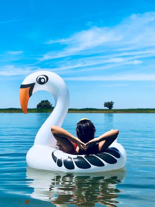 Imagine de stoc gratuită din agrement, apă, călătorie, cer albastru