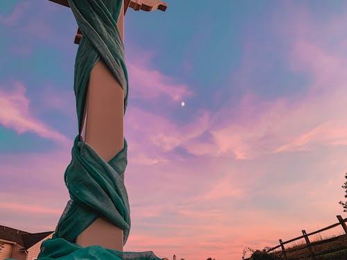 คลังภาพถ่ายฟรี ของ #สีชมพู, erica zhao, คืนสีฟ้า, ตะวันลับฟ้า