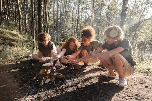 Fotos de stock gratuitas de al aire libre, amistad, amor, árbol