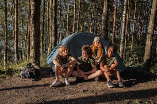 Fotos de stock gratuitas de acampada, adulto, al aire libre, árbol