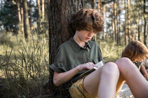 Fotos de stock gratuitas de al aire libre, amor, árbol, caer