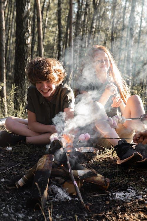 Fotos de stock gratuitas de adulto, al aire libre, árbol, caer