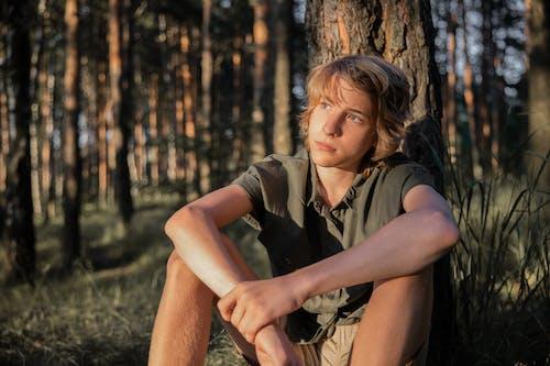 Fotos de stock gratuitas de al aire libre, amor, árbol, bonita