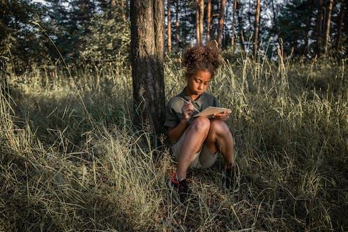 Fotos de stock gratuitas de al aire libre, árbol, bonito, caer