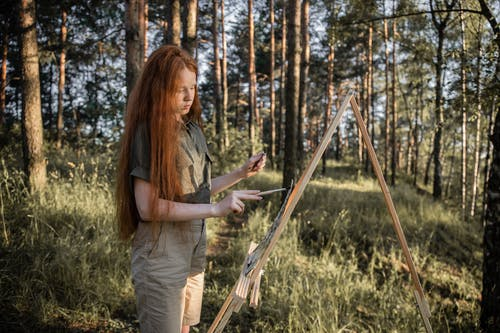 Fotos de stock gratuitas de al aire libre, árbol, aventura, caer