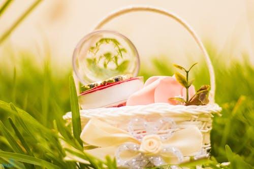 Ilmainen kuvapankkikuva tunnisteilla jauhettu, kori, kristallipallo, makro
