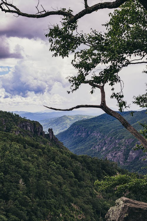Free stock photo of blue mountains, clouds, gorge