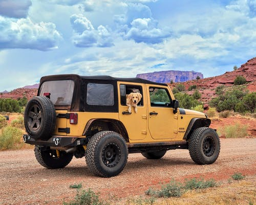 Yellow and Black Jeep Wrangler on Brown Field