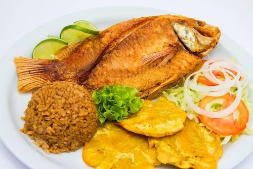 Kostnadsfri bild av fisk, hälsosam, lunch