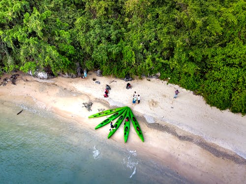 Aerial view to sea and several green canoes and group of people warming-up on sandy beach with green tropical forest before canoeing