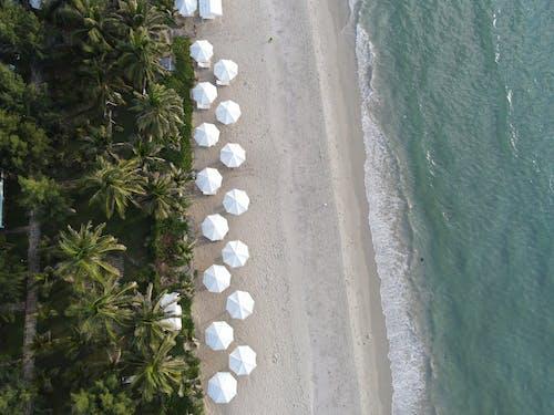 Gratis lagerfoto af ferie, h2o, hav, kyst