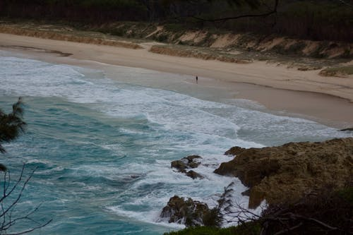Person Walking on Beach Shore