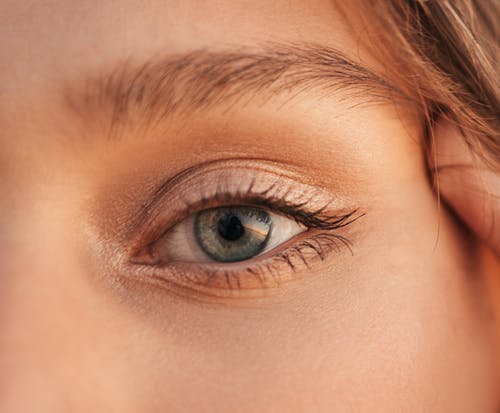 Womans Brown Eyes in Close Up Photography