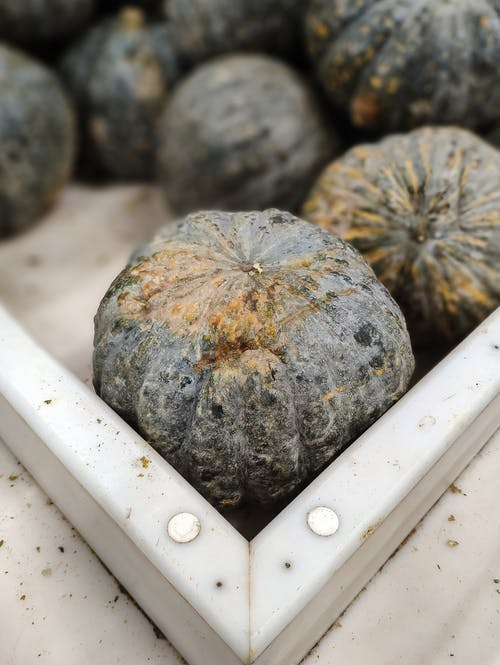From above of pile of whole fresh pumpkins with damaged ribbed peel in plastic box