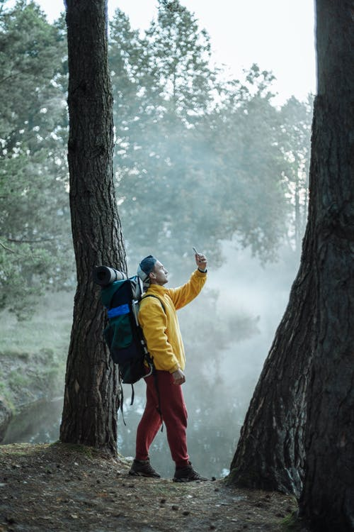 Man in Yellow Jacket and Red Pants Standing on Brown Tree