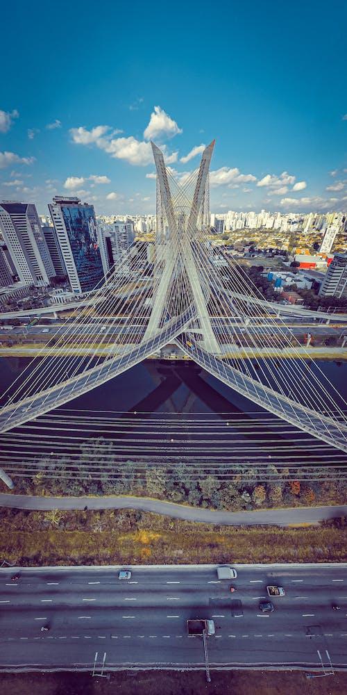 Octavio Frias de Oliveira Bridge in city