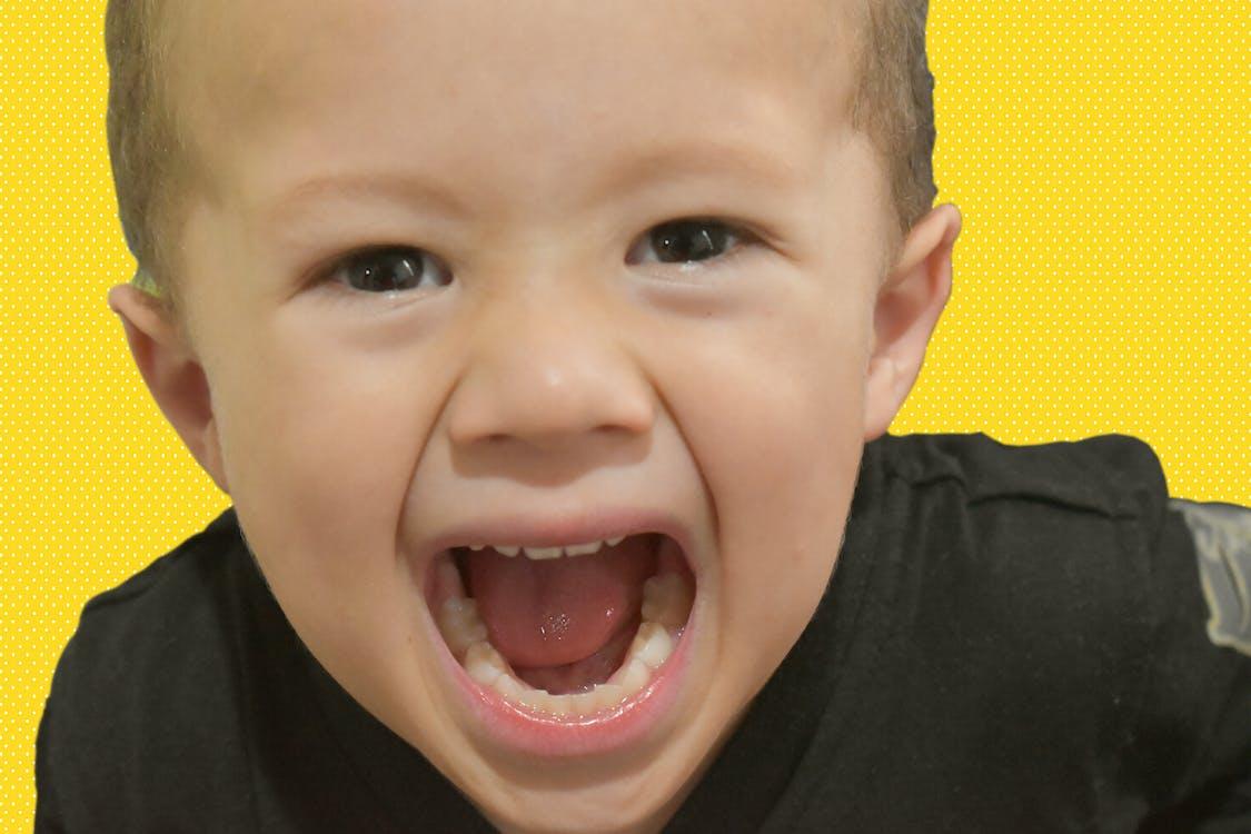 Free stock photo of child, kid, scream