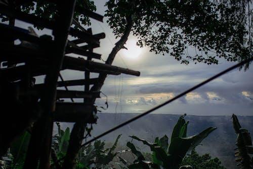 Ingyenes stockfotó ködös reggel témában
