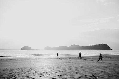 Photos gratuites de aube, bord de mer, bouger, côte
