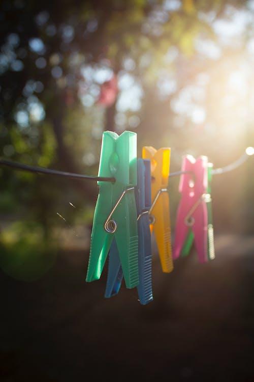 一縷陽光, 曬衣夾, 華美, 豐富多彩 的 免费素材照片