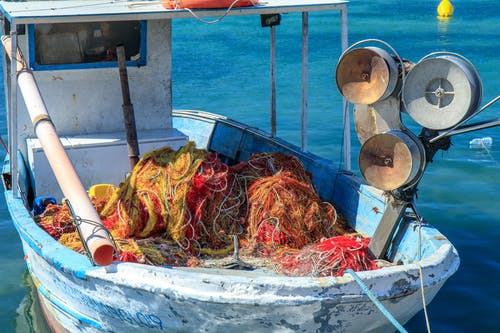 Free stock photo of boat, fish, fishing
