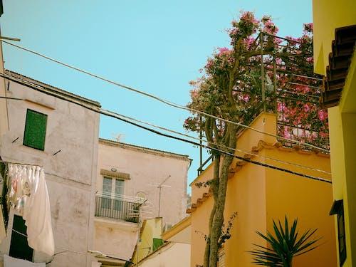 Free stock photo of costiera, homes, italian street