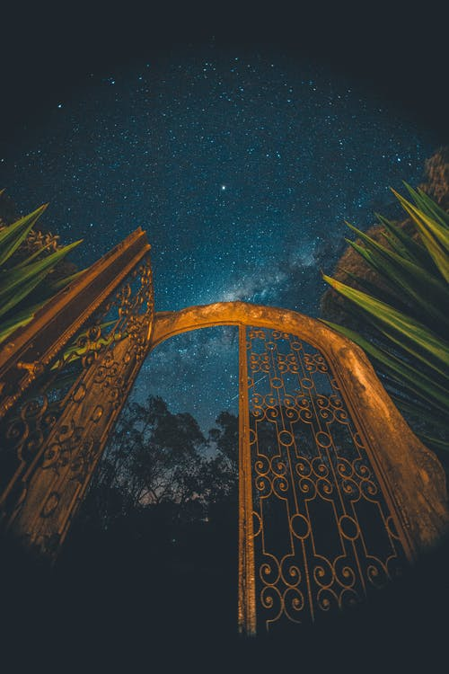 Low angle of golden gate with ornament near trees under blue sky with shiny stars at night