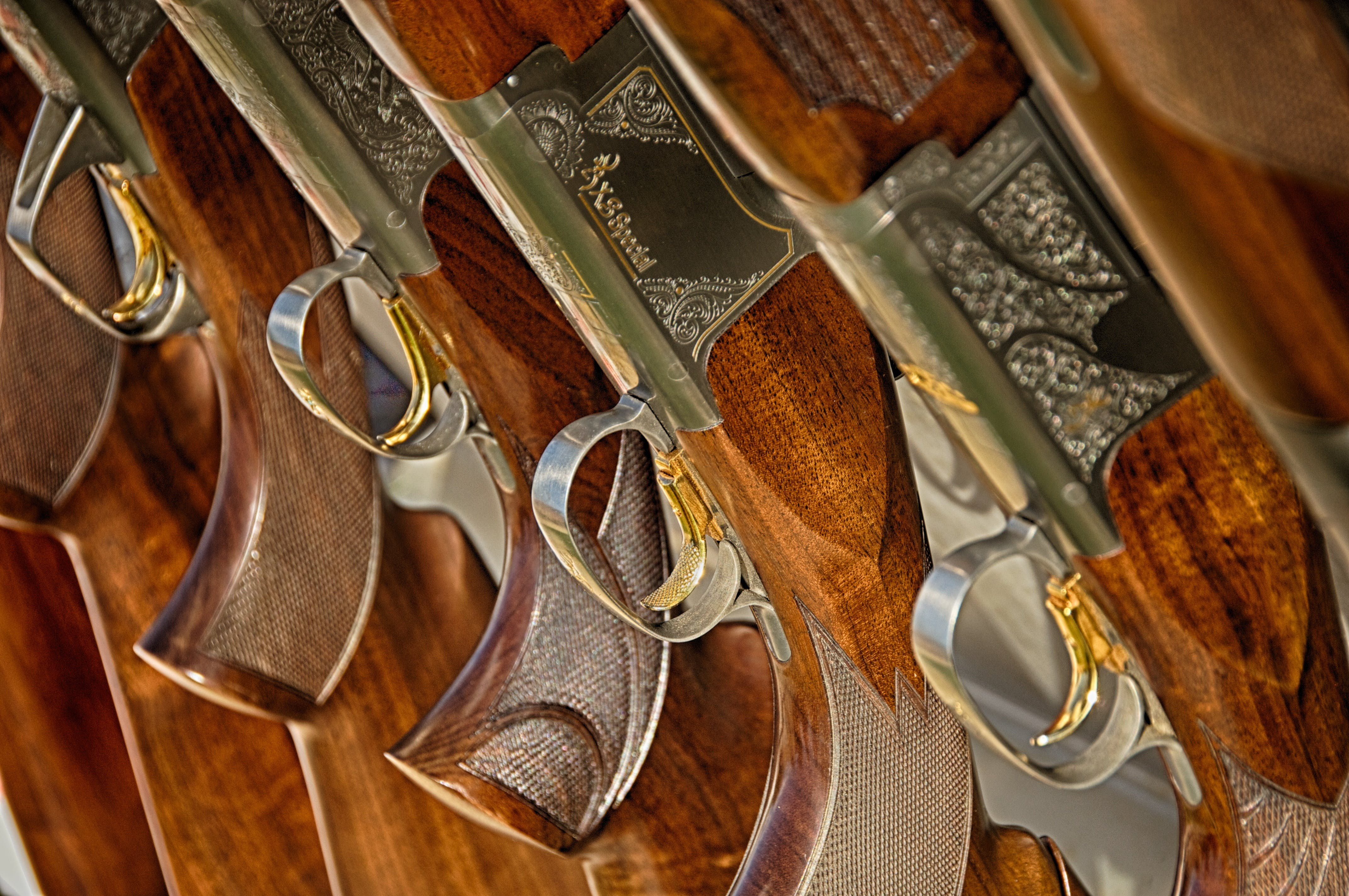 Brown and Gray Rifles Lined Up
