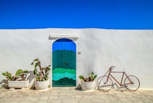 Blue Wooden Door Beside Green Potted Plant